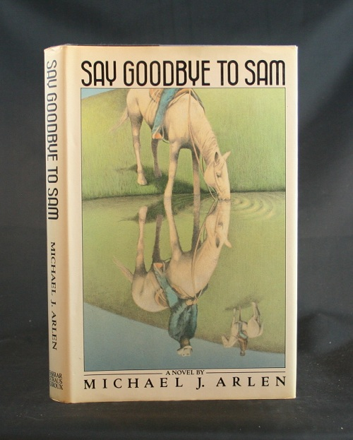 Image for Say Goodbye to Sam