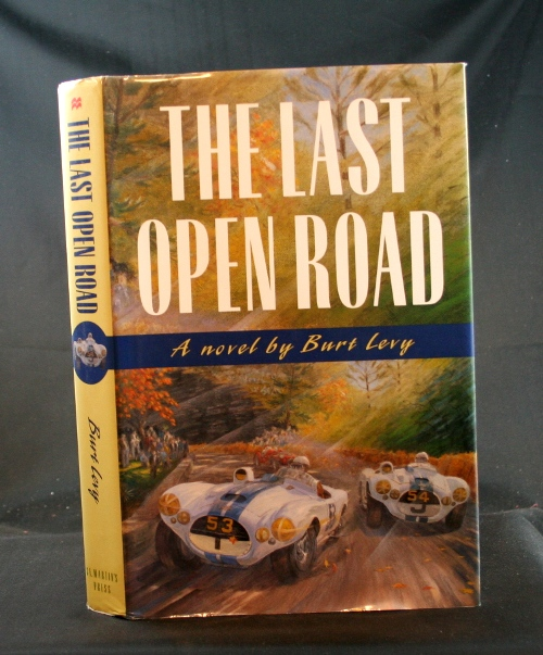 Image for The Last Open Road: A Novel